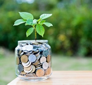 a young plant growing from a jar filled with coins