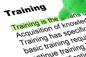 picture of the word training and a dictionary definition for it